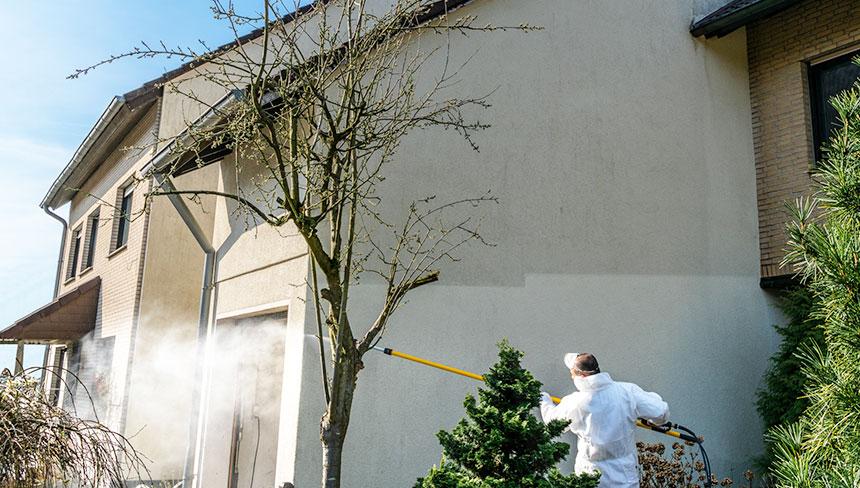 Günstige Fassadenreinigung